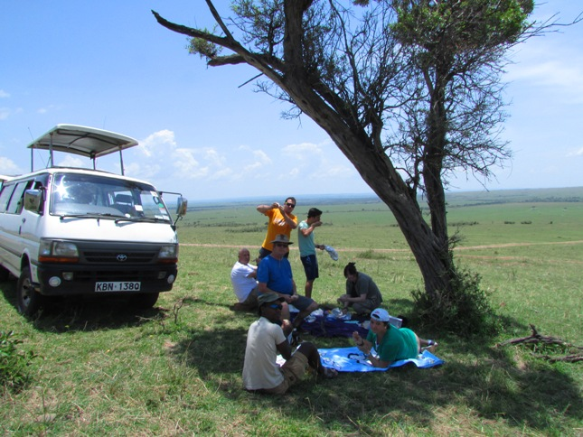 picnic safari