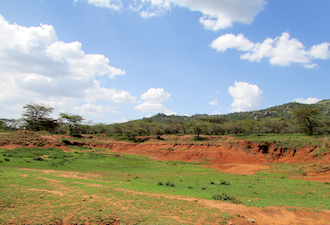 Tsavo East and Tsavo West National Parks